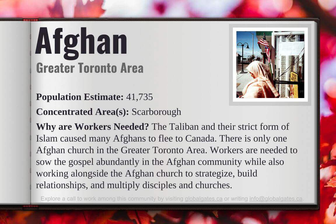 Global Gates Afghan of Greater Toronto Area Profile