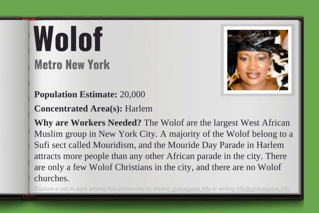 Global Gates Wolof Of Metro New York Profile